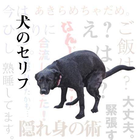 犬のセリフスタンプ